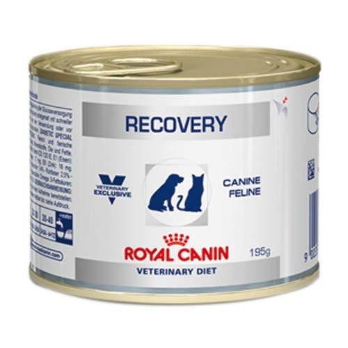 Ração Úmida Royal Canin Lata Canine e Feline Veterinary Diet Recovery